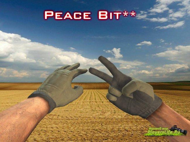 Беззванные перчатки для CS Source