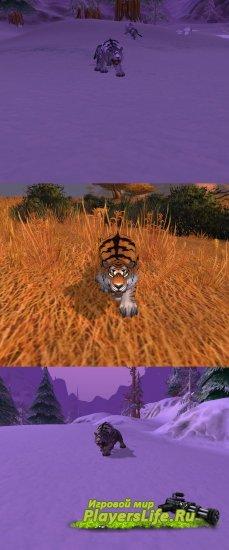 Тигр из Mists of Pandaria для 3.3.5 и катаклизма