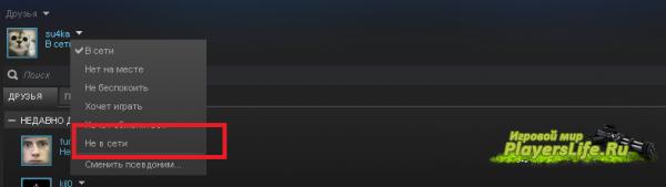(STEAM)Как сделать чтобы друзья не видели во что я играю?